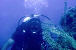 diving16