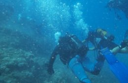 diving22